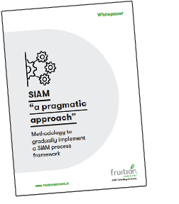 siam_a-pragmatic-approach_whitepaper